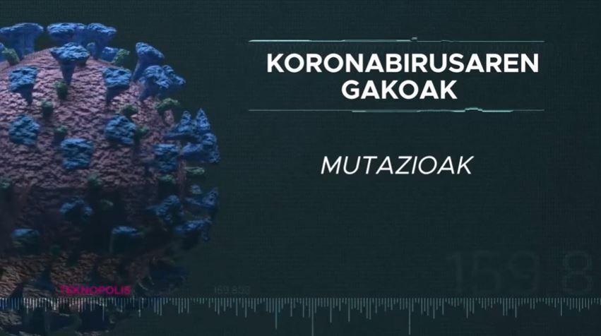 Koronabirusaren gakoak: Mutazioak